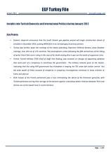 EGF Turkey File, January 2012